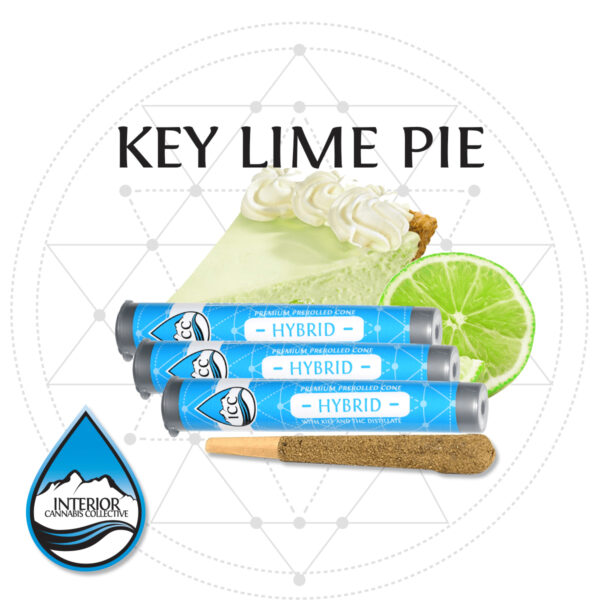key-lime-pie-preroll
