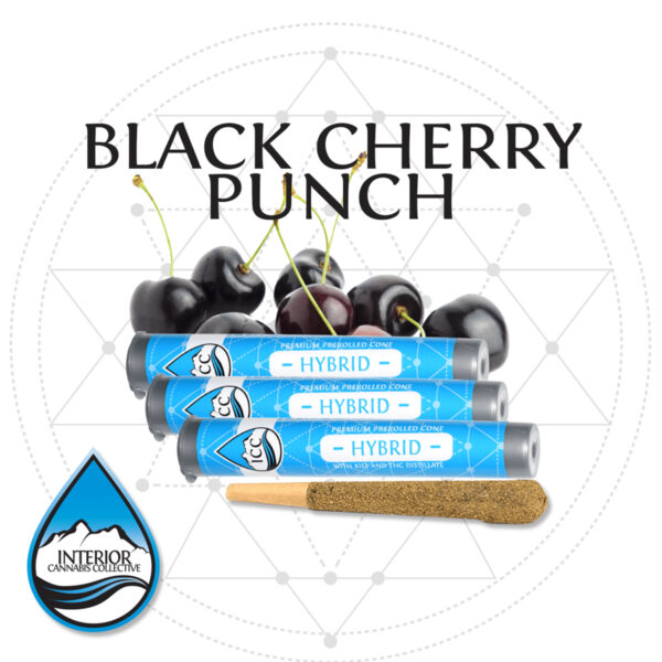 Black-Cherry-Punch-Preroll